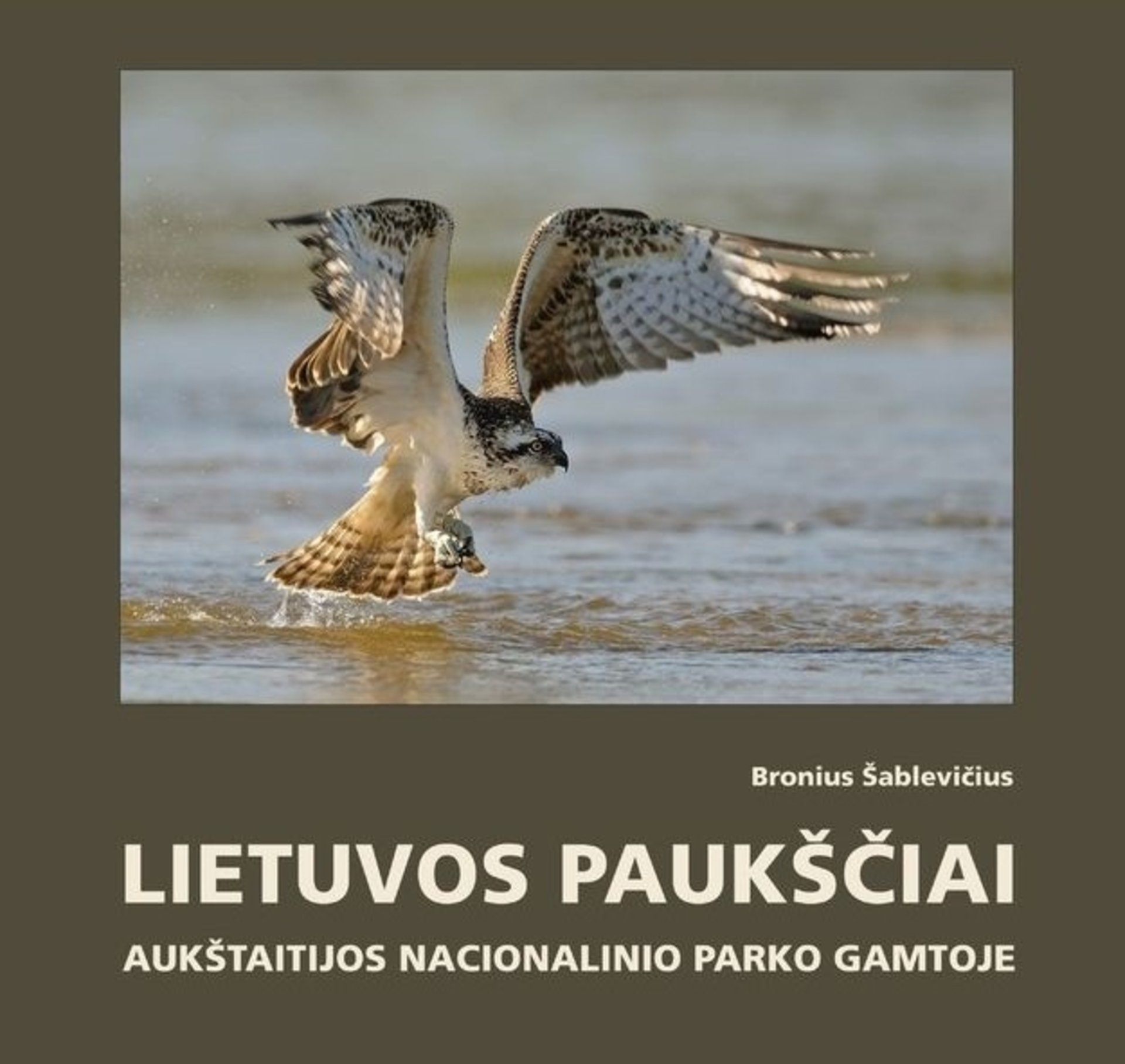 Lithuanian birds in the nature of Aukštaitija National Park