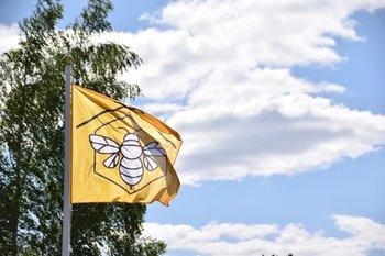 Tarptautinė bitės diena