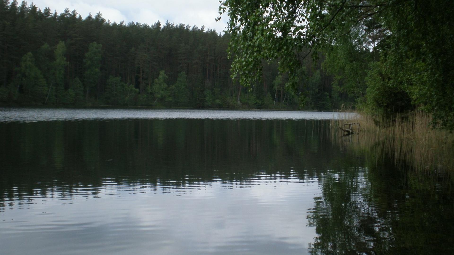 Aplink Alnio ežerą