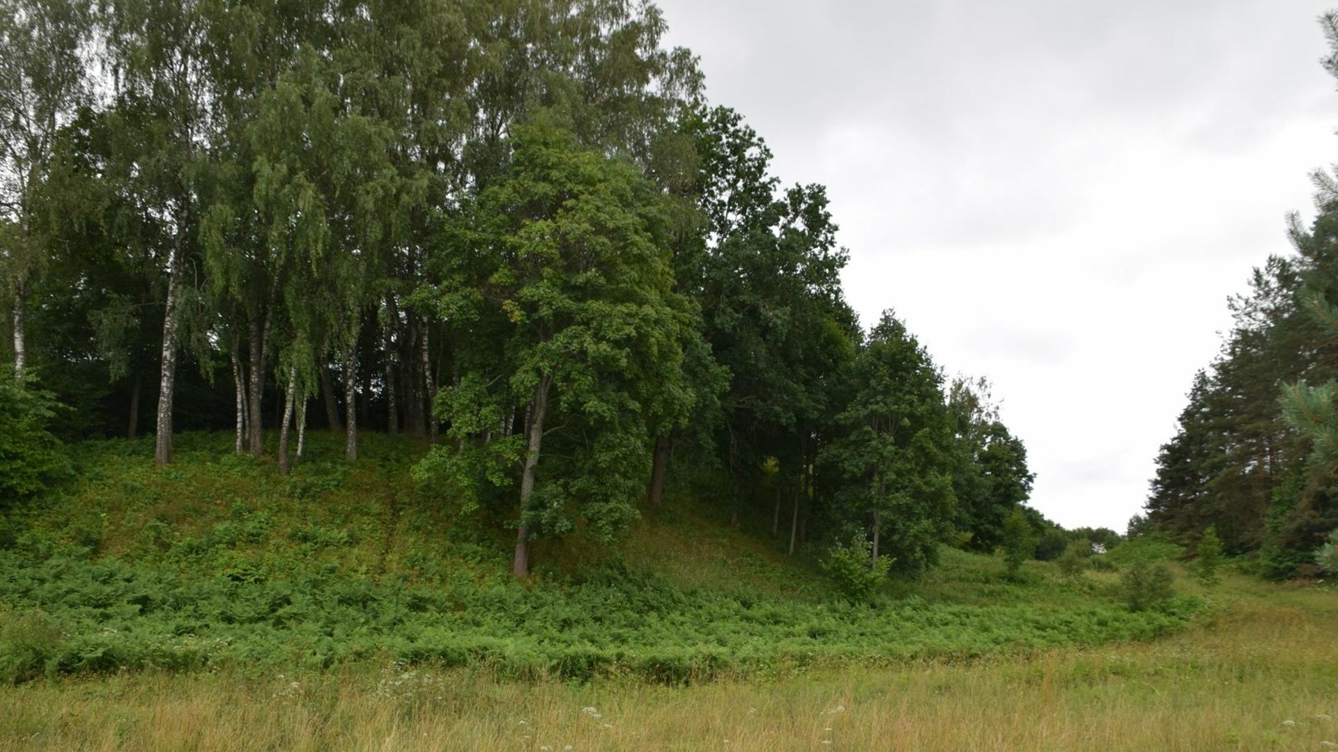 Tauragnai pilskalns