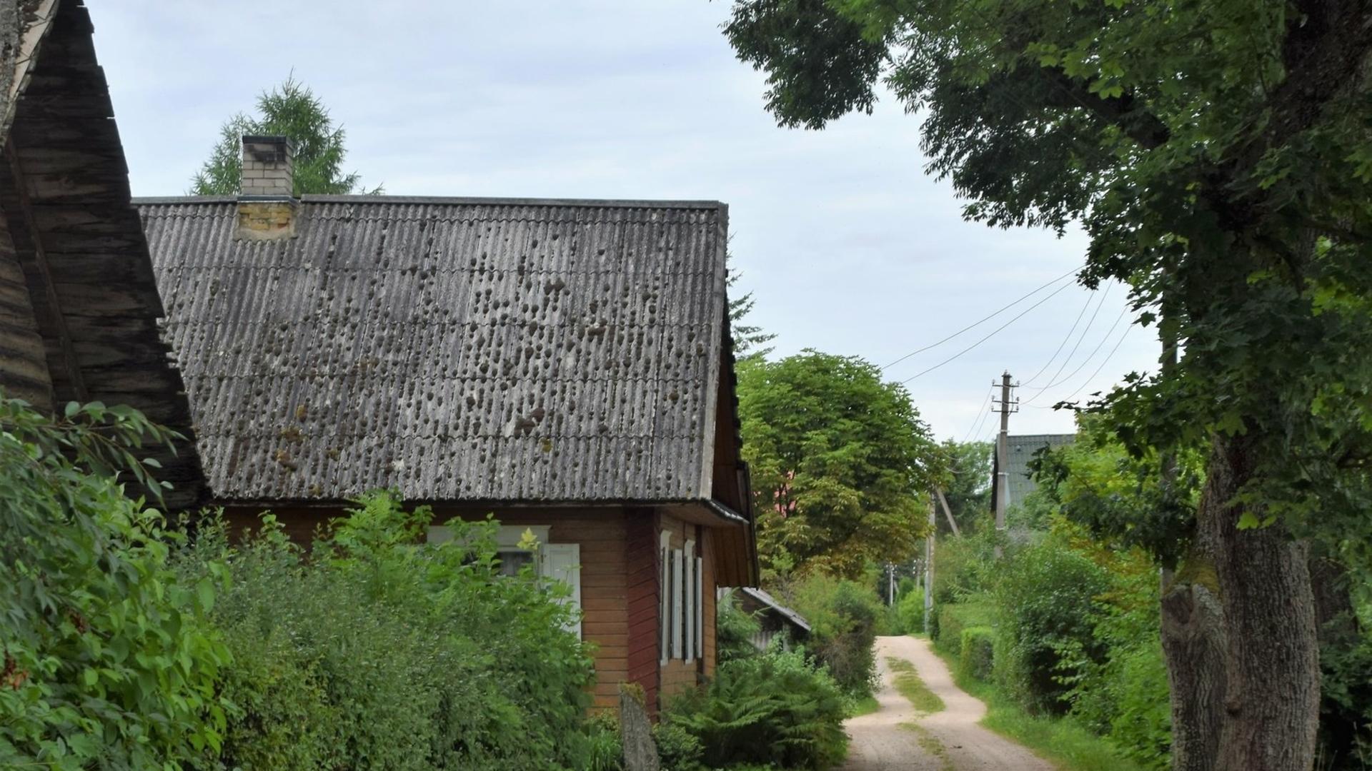 Etnografiniai kaimai: Kretuonys