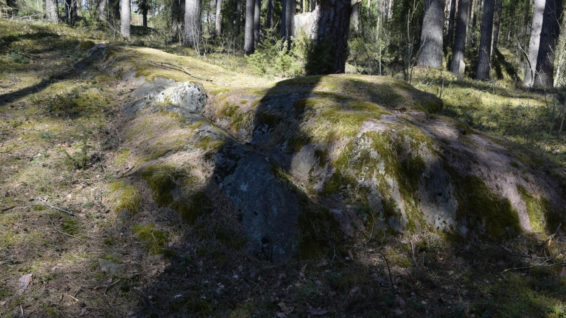 Lakajos akmuo