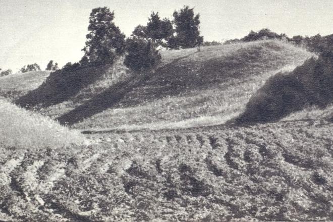 Tauragnai mound