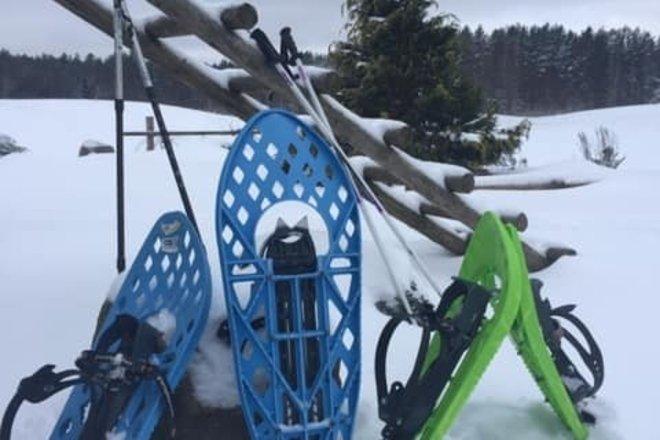 Sniegbačių nuoma
