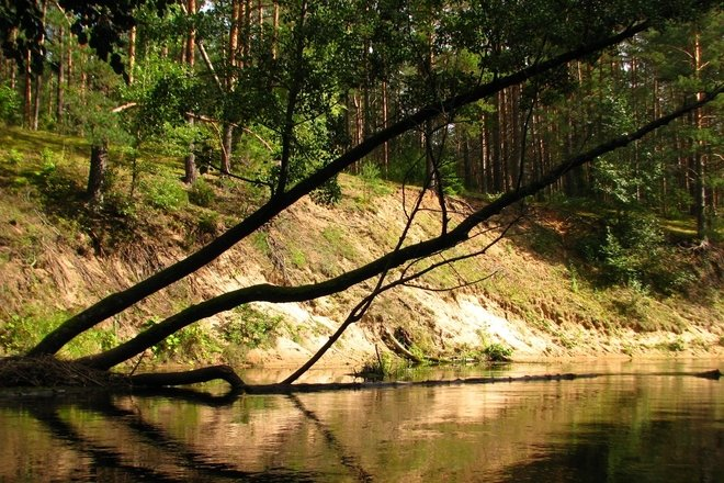 Kajakverleih in den Flüssen Žeimena und Kiauna