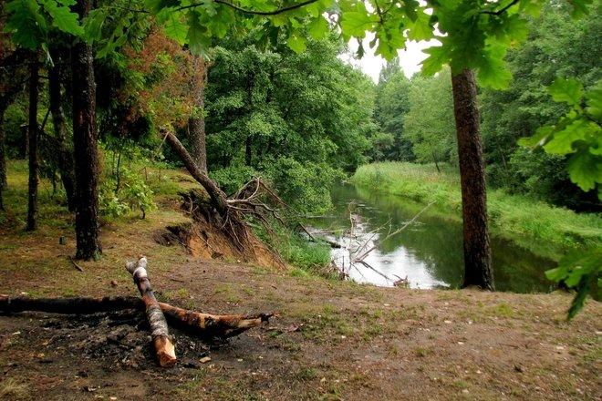 Kayak rent in Žeimena and Kiauna rivers