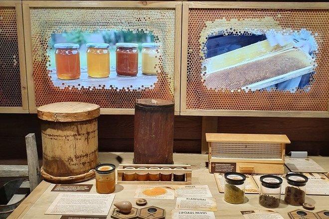 Образовательная программа «Получение меда»